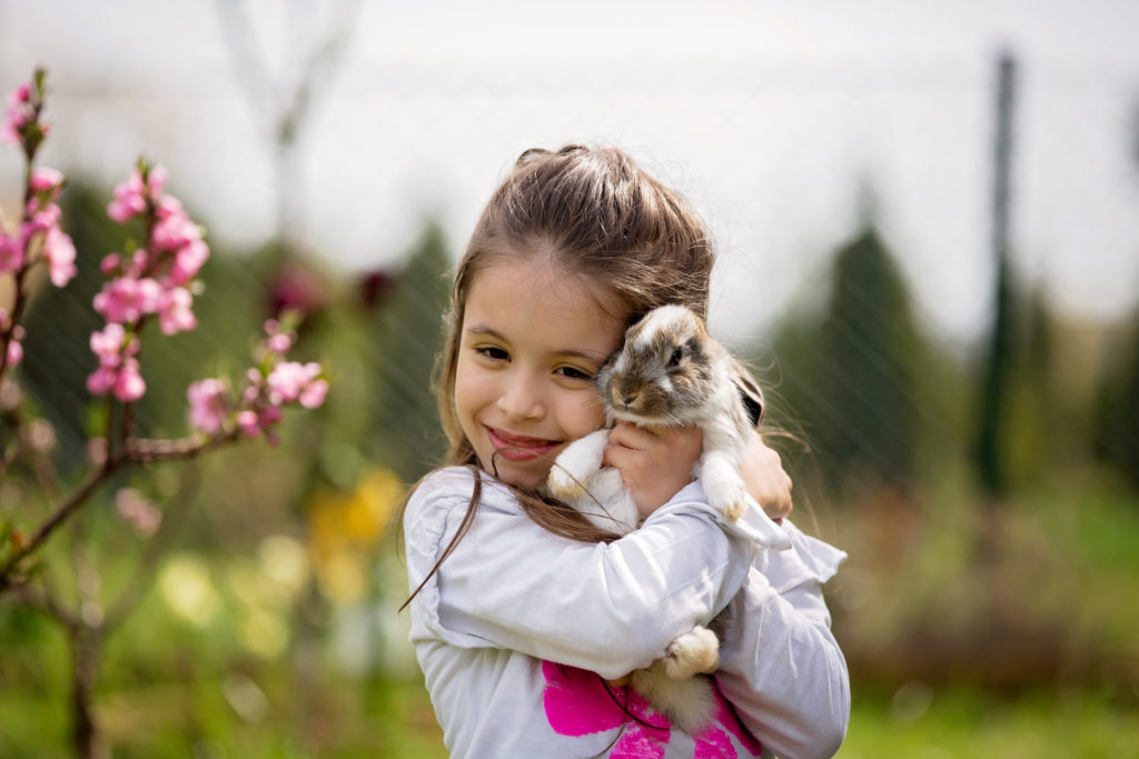 Spring Foster Youth